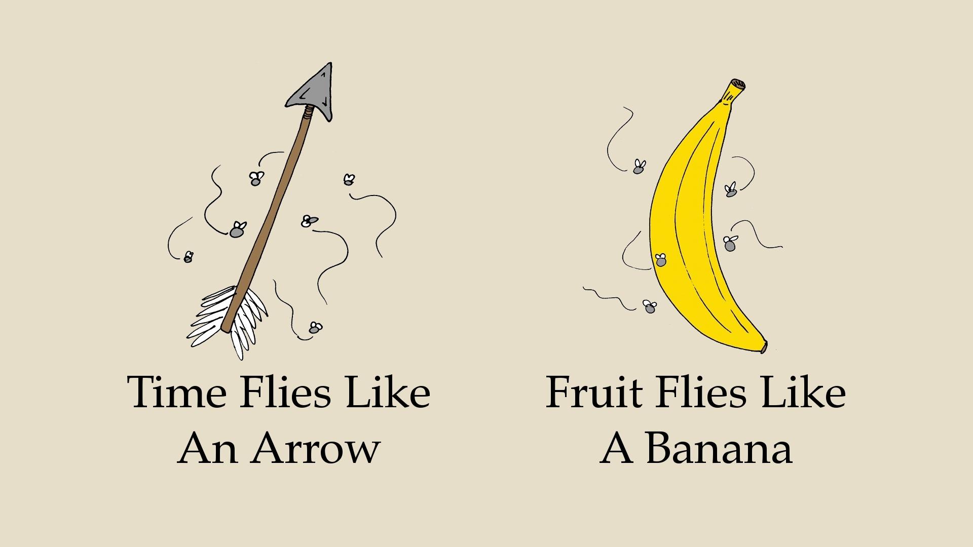 Similar To Fruit Flies - Best Fruit 2017